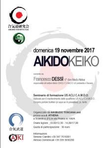 stage dessi 19 novembre 2017